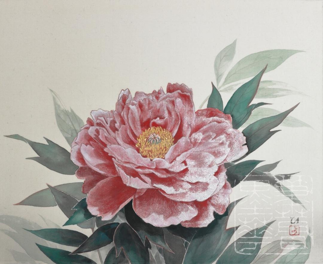 <i>Botan</i> flower (<i>Paeonia suffruticosa</i>)