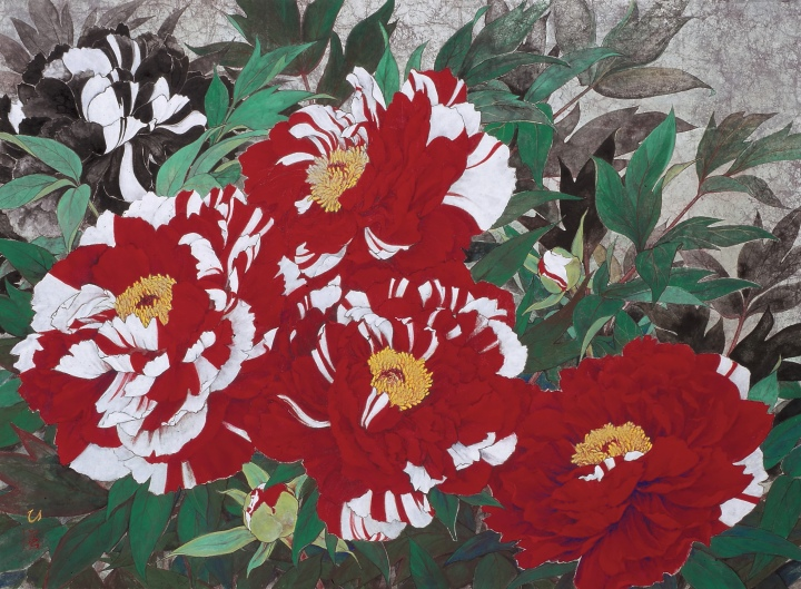 Red-and-white <i>botan</i> flowers (<i>Paeonia suffruticosa</i>)