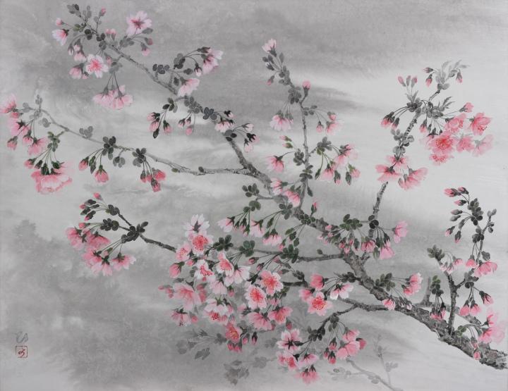 <i>Kawadzu-zakura</i> (Cherry blossom)